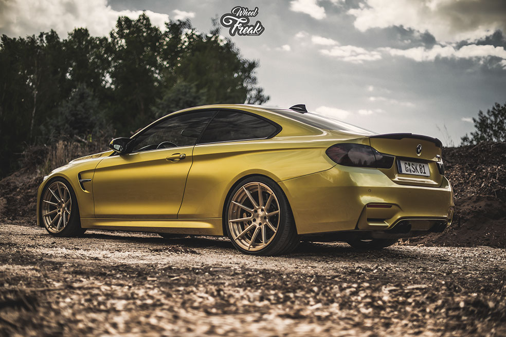 ZP.FORGED 1 Super Deep Concave | ROYAL GOLD